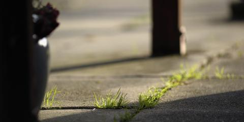 Why You Should Seal Your Concrete Driveway Norwood