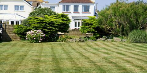 Let Grago Lawn Care Provide You With Lush Lawn Renovation Services, Sewickley, Pennsylvania