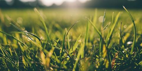 Prepare Your Property For Spring With These Winter Lawn Care Tips From  Glaciers Edge Maintenance,