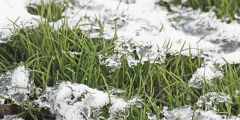 3 Important Lawn Maintenance Tips for Winter, Hempstead, New York