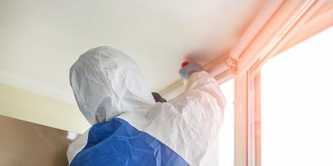 What Are the Health Risks of Mold?, Sugar Creek, Indiana