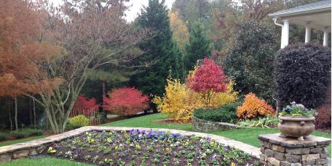 9 Plants to Make You Fall for Your Landscape This Autumn, Greensboro, North Carolina