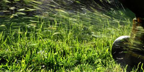 Lawn Mowing Tips for When Your Grass Gets Too Long, Loveland, Ohio