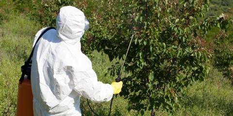 3 Best Times for Herbicide Application Explained, Whiteville, Arkansas