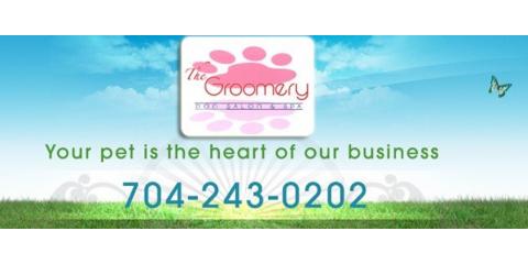 The Groomery, Pet Grooming, Services, Waxhaw, North Carolina