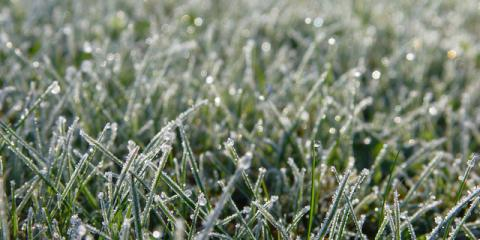Dreary Lawn? Call Ground Squad for Winter Lawn Cleanup Services!, Buffalo, Minnesota
