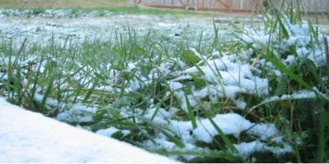 Ground Squad Snow Removal Service Will Keep Your Lawn Perfect This Winter, Buffalo, Minnesota