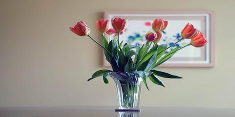 How to Add Fresh Flowers to Your Room Design, Gulf Shores, Alabama