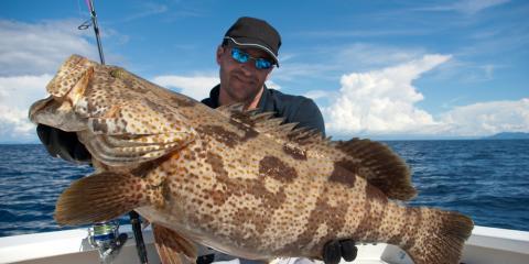 Book your gulf coast vacation rental go deep sea fishing for Gulf coast fish