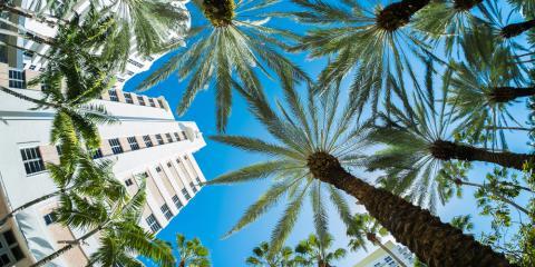 Why Miami, FL Is the Best Winter Travel Destination, Manhattan, New York
