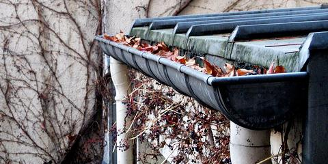 Gutters Clogged With Debris Solve The Problem With One Of