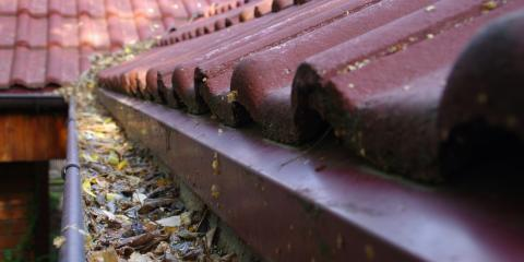 Why You Should Clean Your Gutters This Fall, Waterbury, Connecticut