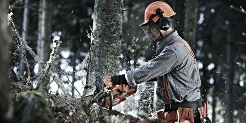 3 Essential Chainsaw Safety Tips , Middlefield, Ohio