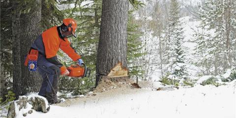3 Uses for Chainsaws in the Winter, Middlefield, Ohio