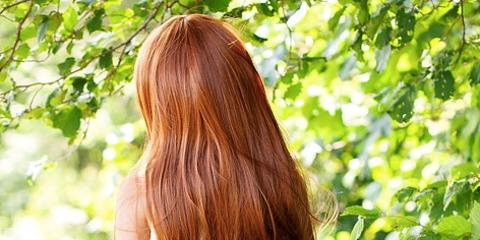 The Healthy Hair Care Diet: Try These 5 Foods, West Adams, Colorado