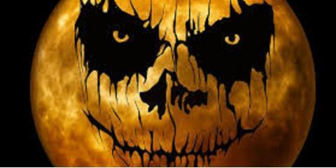 Happy Halloween Wesley Chapel, ,