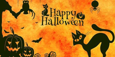 Happy Halloween!, Montgomery, New York