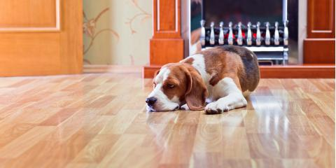 A Guide to Popular Hardwood Floor Finishes, Hamilton, Ohio