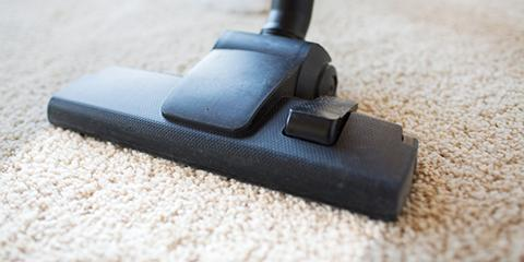 How Often Should You Have Carpets Deep Cleaned?, Hamilton, Ohio