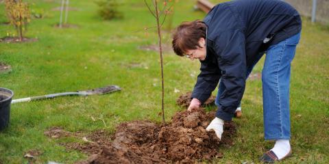 5 Reasons to Plant in the Fall, Hamilton, Ohio