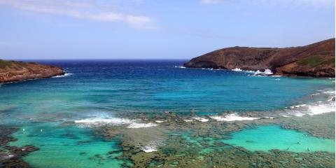 Hanauma Bay Snorkeling: What to Know Before You Go, Honolulu, Hawaii
