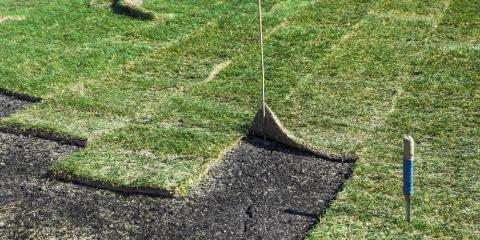 What You Need to Know About Laying Sod, Green Bay, Wisconsin