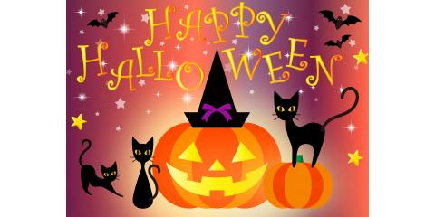 Have a Happy and Safe Day of Trick-or-Treating!!!!, Forked River, New Jersey
