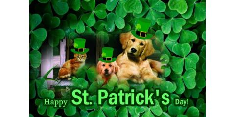 Happy St. Patrick's Day 2017, Forked River, New Jersey