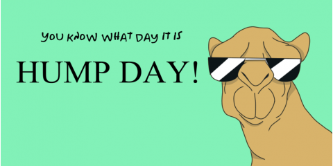 TODAY'S HUMP DAY CAMEL BURGER IS:  NEXT LEVEL MUSHROOM & SWISS CAMEL BURGER!, La Crosse, Wisconsin
