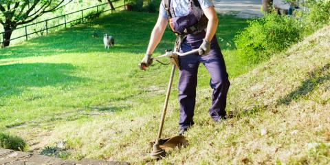 3 Ways to Keep Your Weed Wacker Line From Breaking, Franklinville, New York