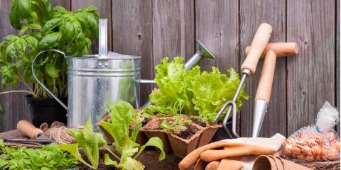 Garden Supplies & Tips for Beginners, Morgan, Ohio