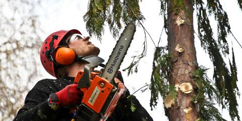 The Do's & Don'ts of Using a Chainsaw Safely, Franklinville, New York