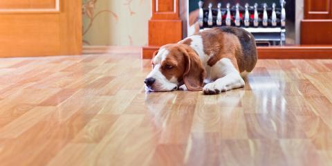 4 Steps for Maintaining Hardwood Floors, ,