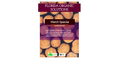 MONTHLY SPECIAL, Brandon, Florida