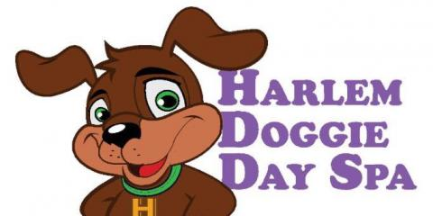Harlem Doggie Day Spa, Pet Grooming, Services, New York, New York