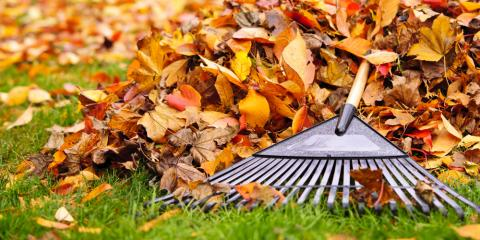 Why You Should Hire a Lawn Care Company for Leaf Removal Services, Harrison, New York