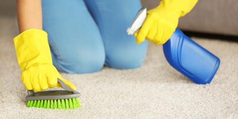 Top 3 Carpet Cleaning Tips From the Pros , Waihee-Waikapu, Hawaii
