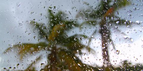 The Basics You Should Know About Hurricane Insurance , Honolulu, Hawaii