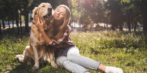 How to Tell if Your Dog Has a Bowel Obstruction, Round Lake, Wisconsin