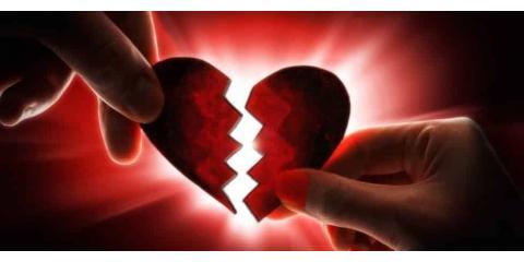 Mending Broken Hearts -- By Reprogramming Cells, North Branch, Minnesota