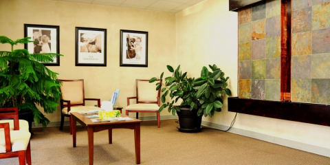Health One Chiropractic, Chiropractor, Health and Beauty, Thomasville, North Carolina