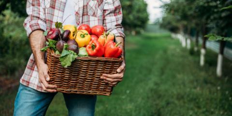 Healthy Restaurant Explains the Benefits of Locally-Sourced Vegetables, Cincinnati, Ohio