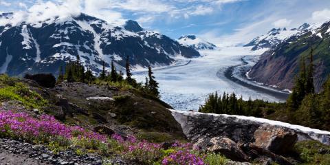 ATV Dealer Shares the Essentials for Alaskan Riding, Healy, Alaska
