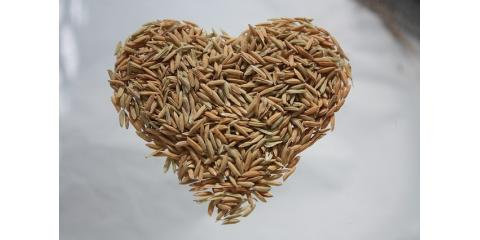 Your Guide for Consuming Whole Grains as Part of a Weight Loss Diet, Lincoln, Nebraska
