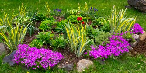 5 Ways Businesses Can Benefit From Rain Gardens, Henrietta, New York