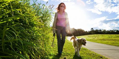 Top 5 Dog Walking Etiquette Rules for Proper Animal Care, Ewa, Hawaii