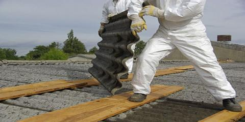 What's the Difference Between Black Mold and Asbestos?, Ewa, Hawaii
