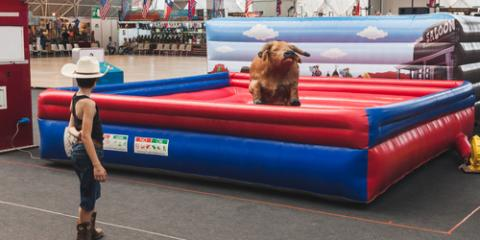 Save Big on Mechanical Bull Rentals at Mekbull, Waianae, Hawaii