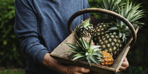 Oahu Growers Share 3 Tips for Choosing a Perfectly Ripe Pineapple, Honolulu, Hawaii