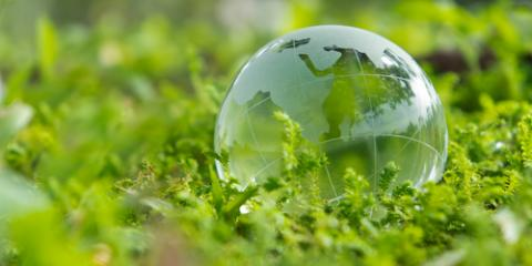 3 Environmentally Friendly Practices Businesses Can Adopt, Honolulu, Hawaii